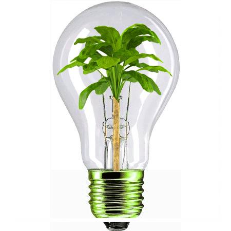 energie verte REUTENAUER SAVERNE